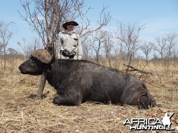 Zimbabwe Buffalo - 1