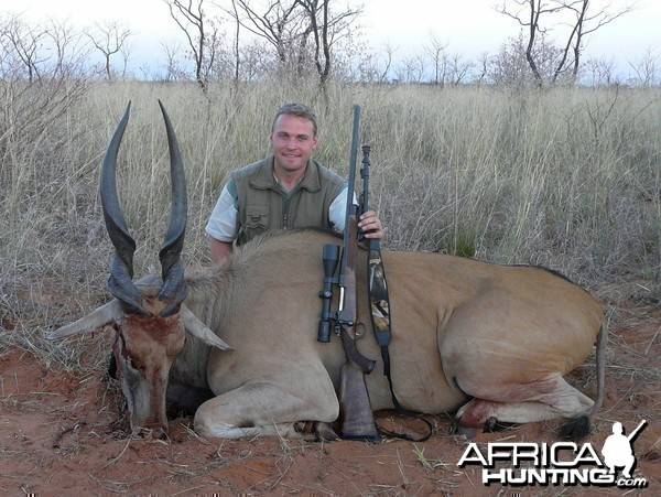 Cape Eland hunted in Namibia, Grootfontein, by Charl Kemp