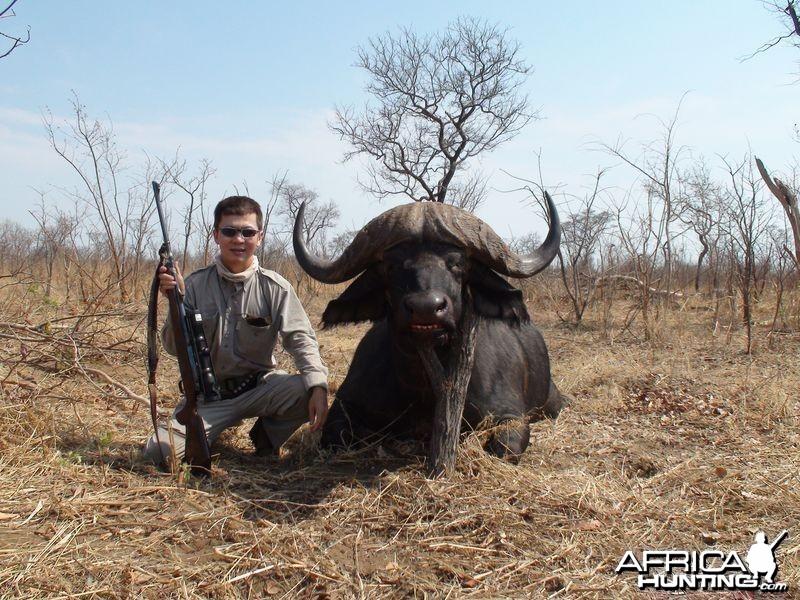 Zimbabwe Buffalo - 3