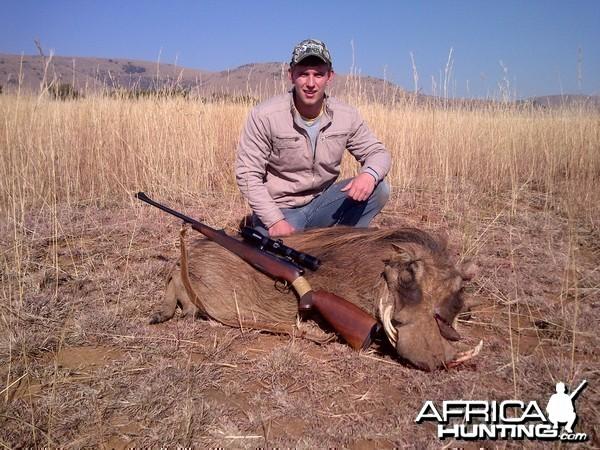 warthog hunt