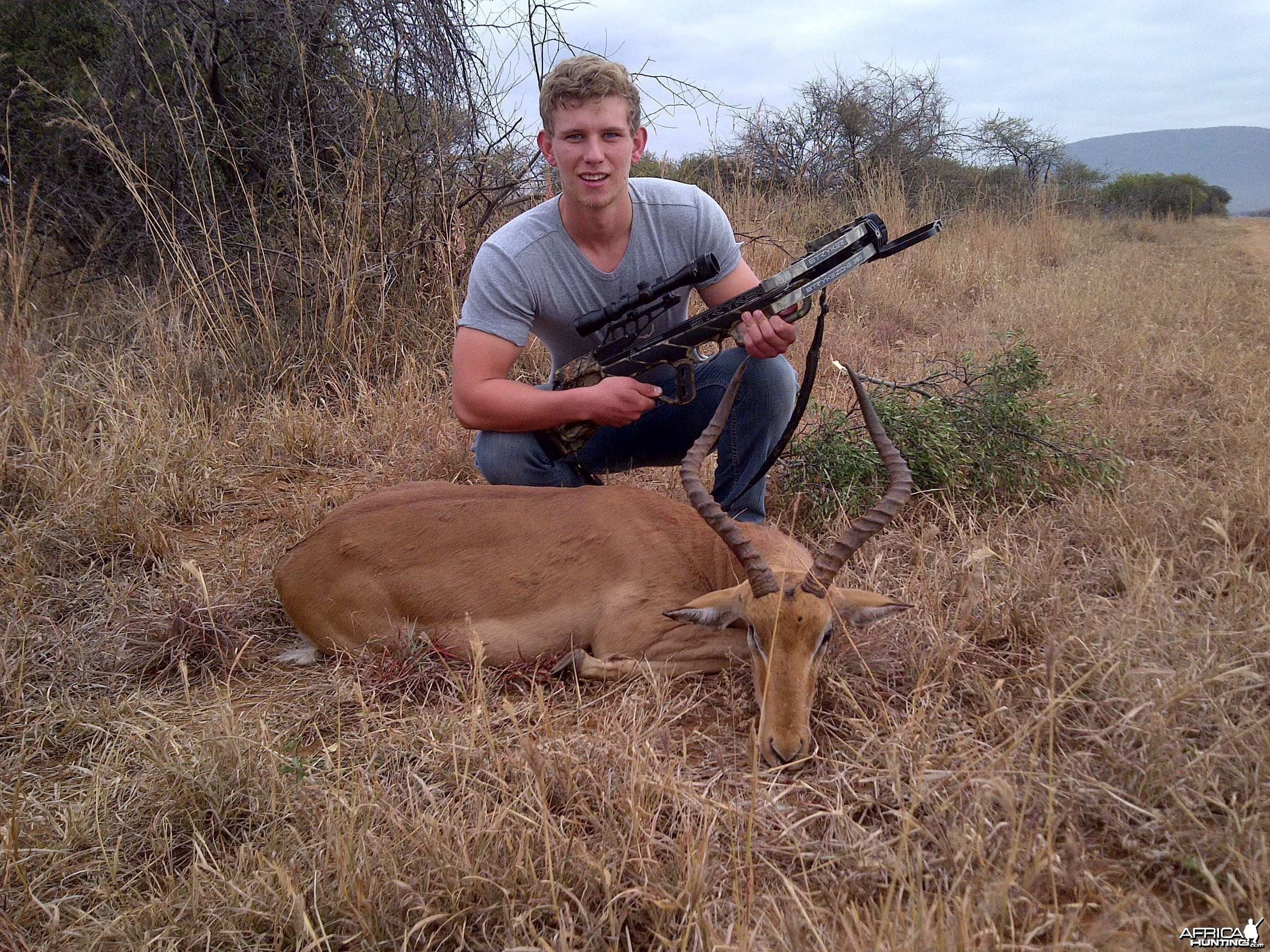 impala crossbow hunt