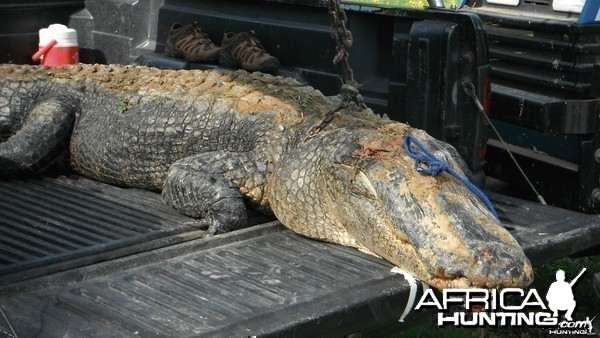 ANOTHER TWELVE FOOTER TAKEN IN OUR AREA