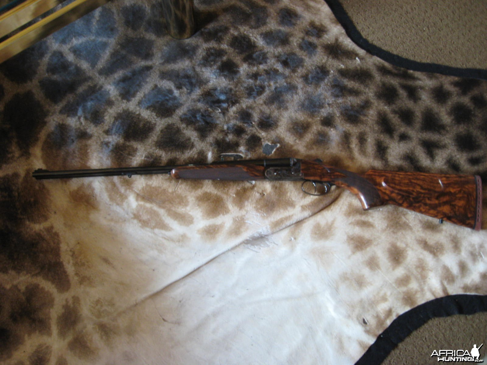 sabatti model 92 african double