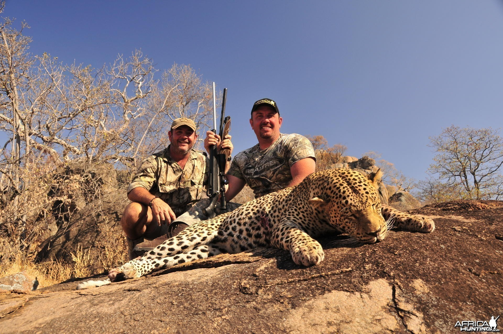 Zimbabwe Leopard