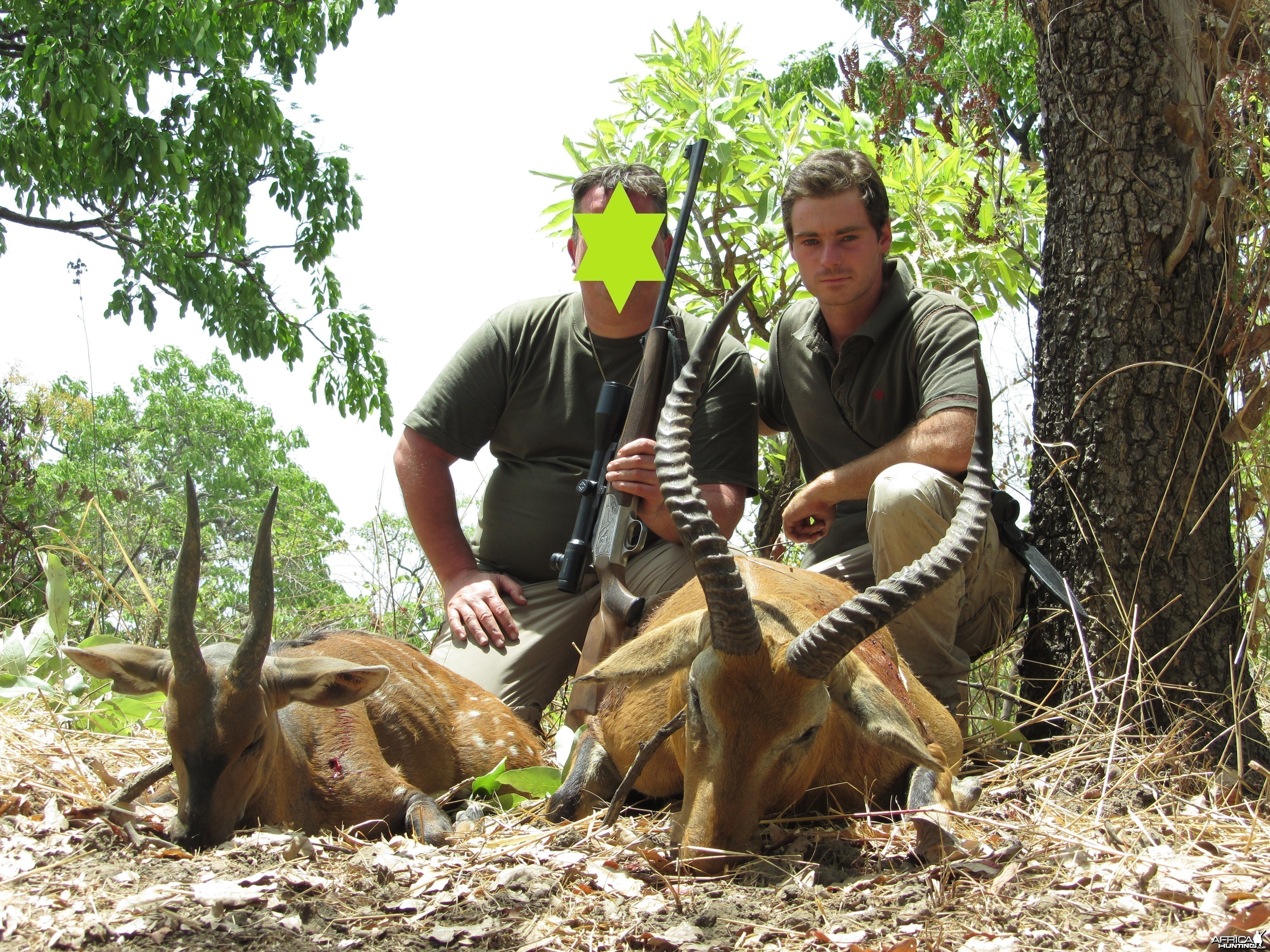 Buffon's Cob and Harnessed Bushbuck