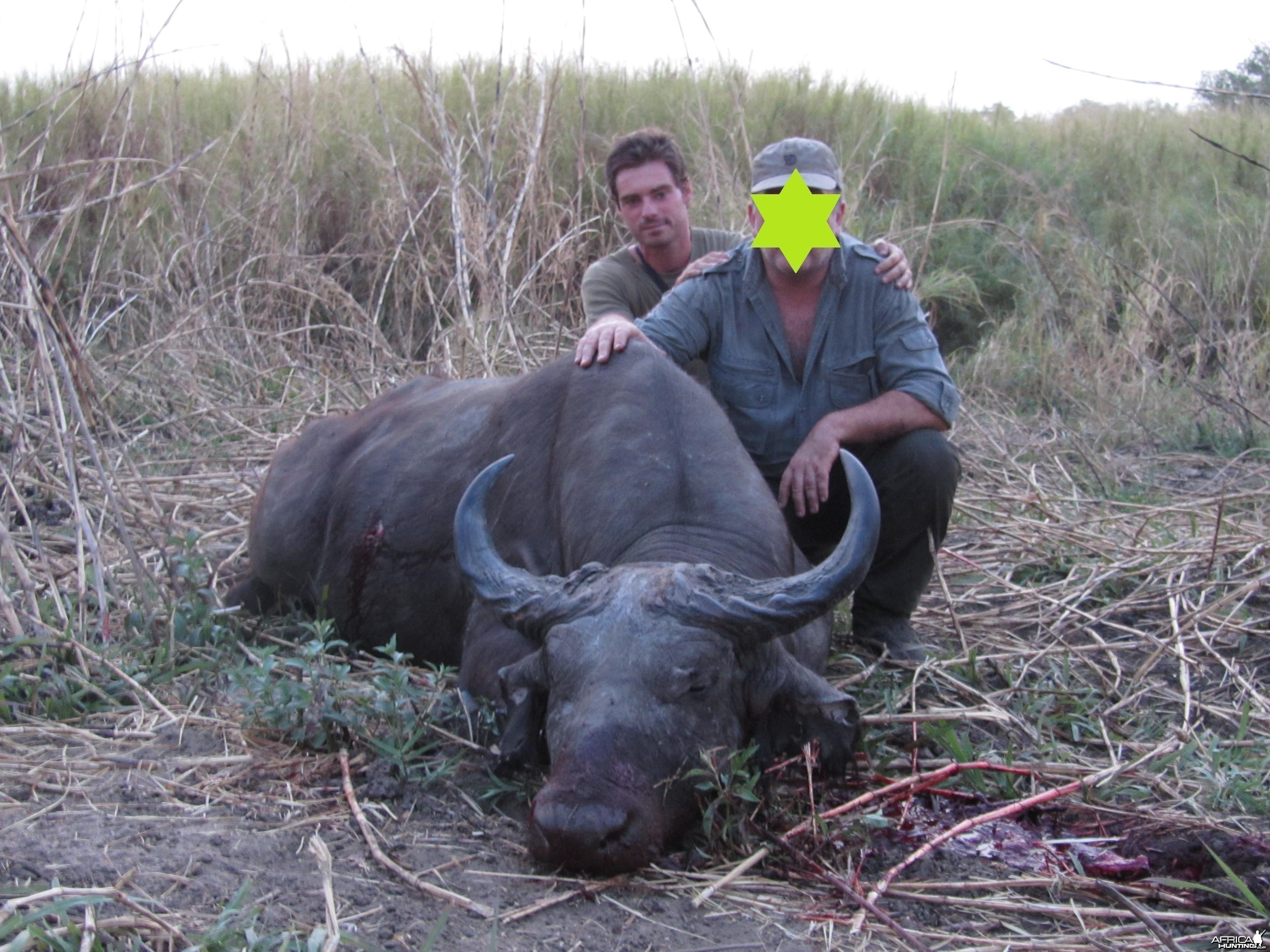 Nice Buffalo