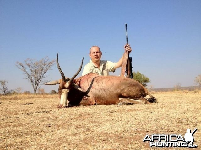 Blesbuck - South Africa Hunted with Tolo Safaris