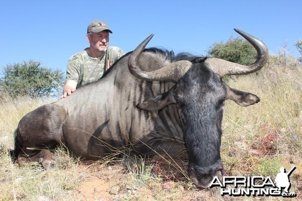 Blue Wildebeest Namibia 2012