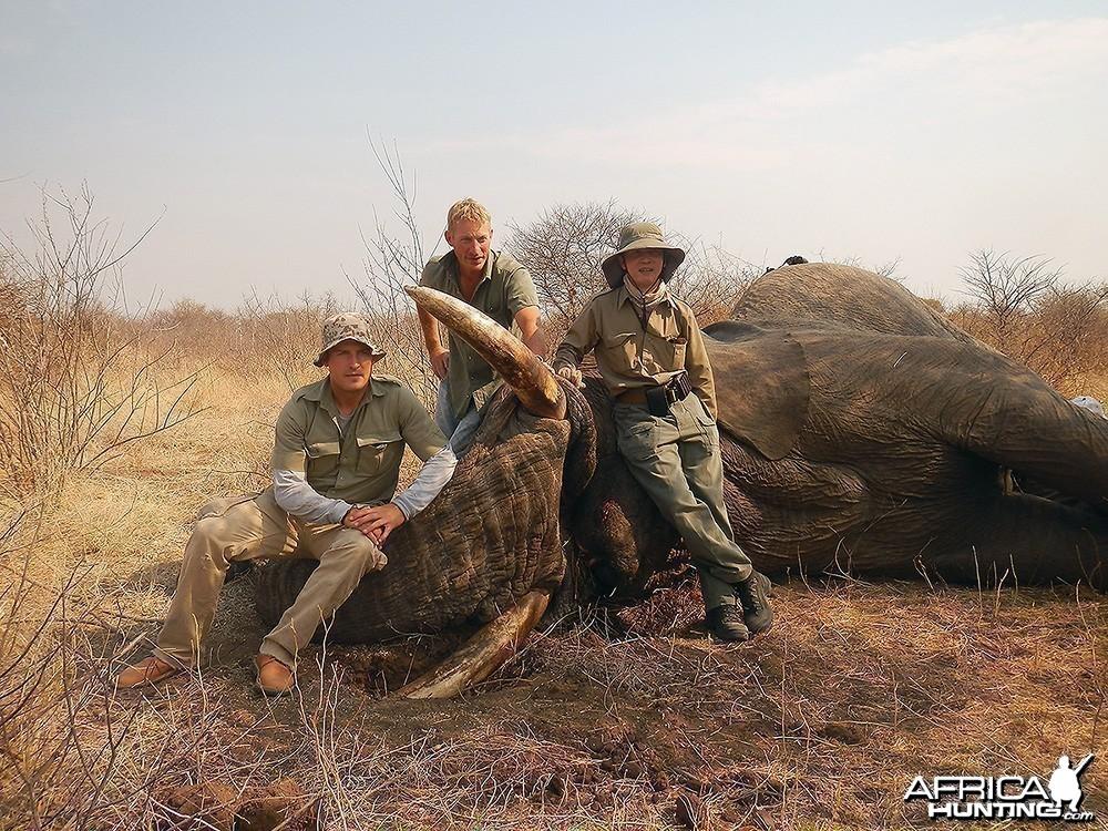Namibia' Elephant - 1