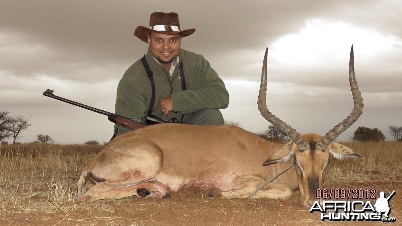 Safari 2012