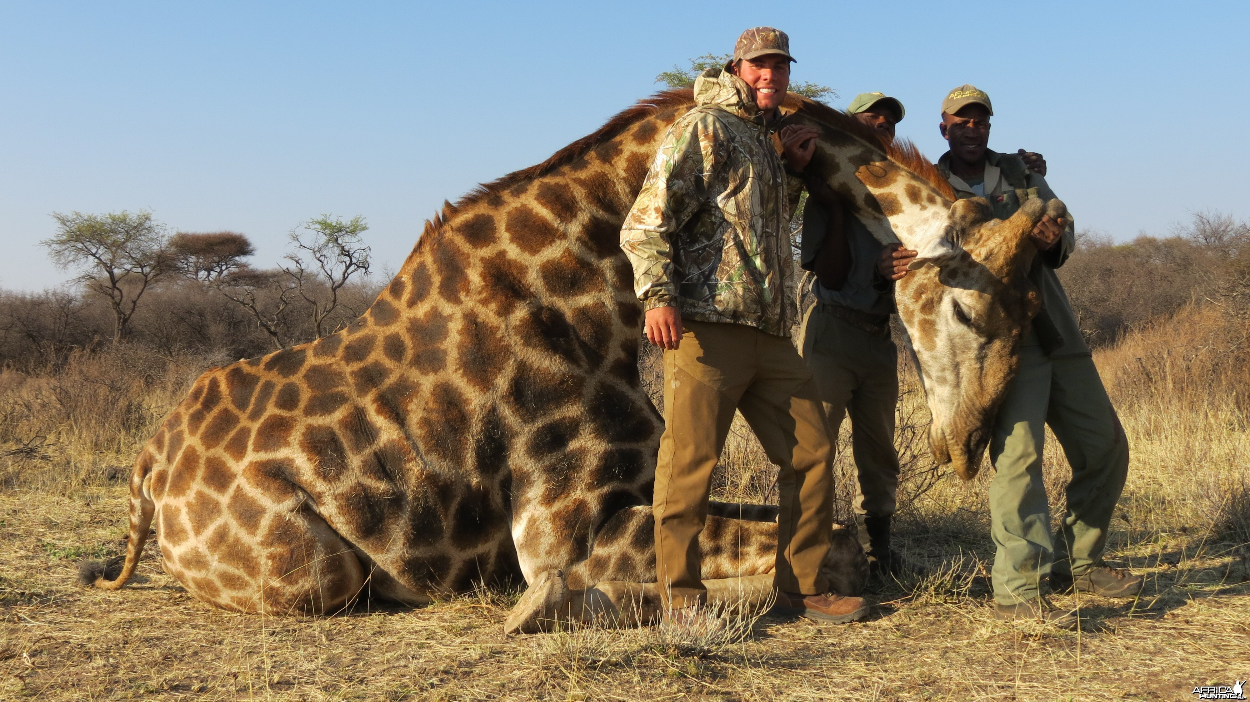 Giraffe hunted with Ozondjahe Hunting Safaris in Namibia