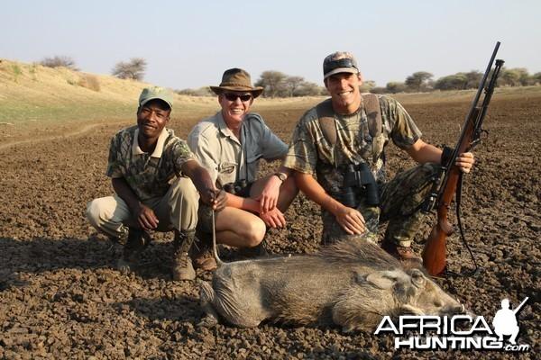 Warthog hunted with Ozondjahe Hunting Safaris in Namibia
