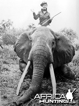 Elephant Hunting Safari