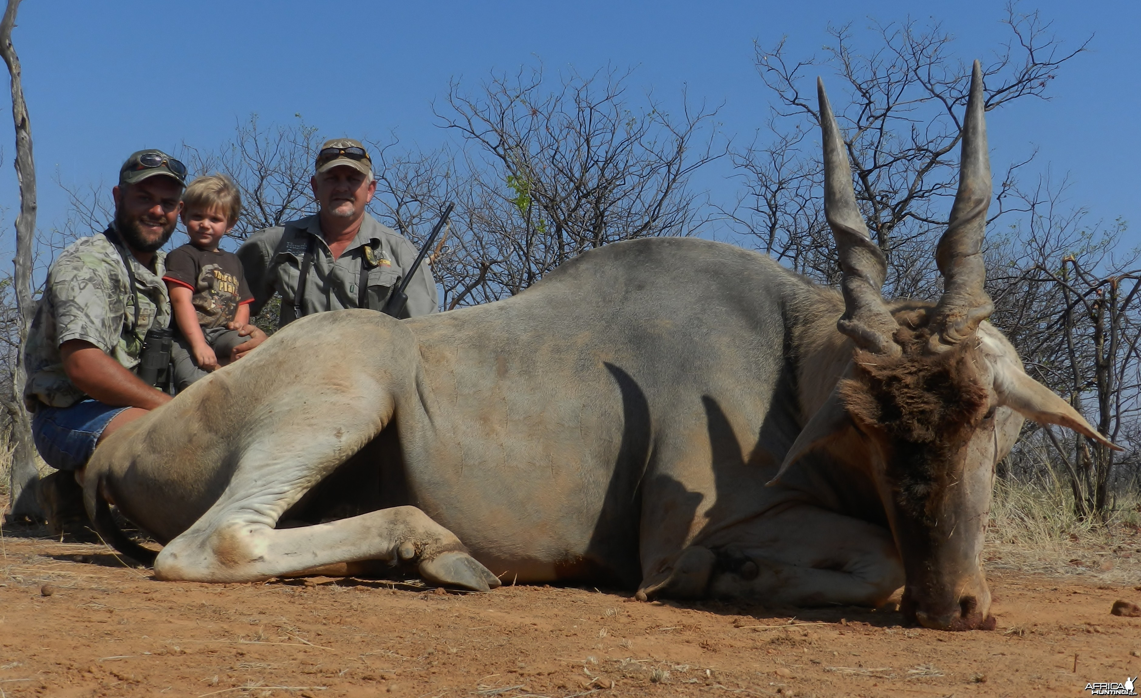 Eland bull hunted by Janus Smit