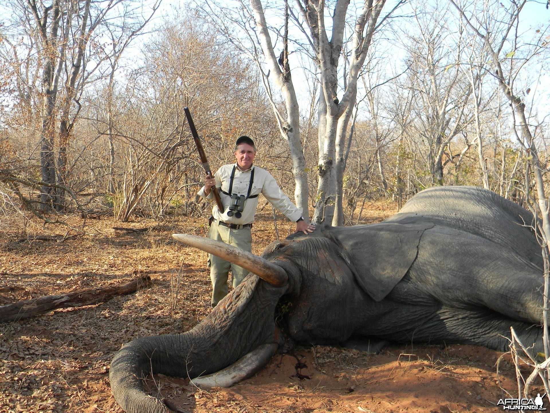 Monster Ele in Zim with TheSafariConnection & Jimba Safaris