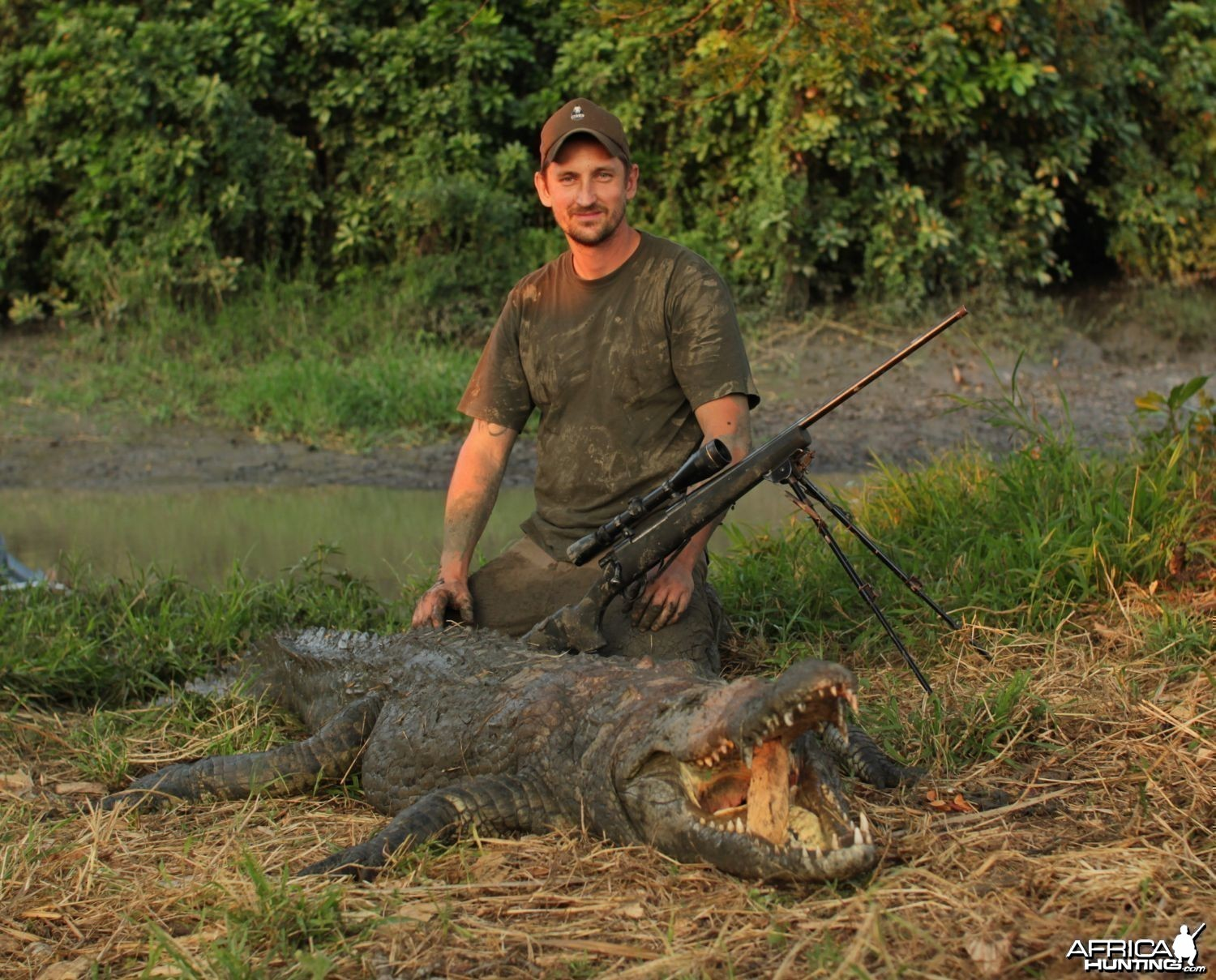 Mozambique Crocodile