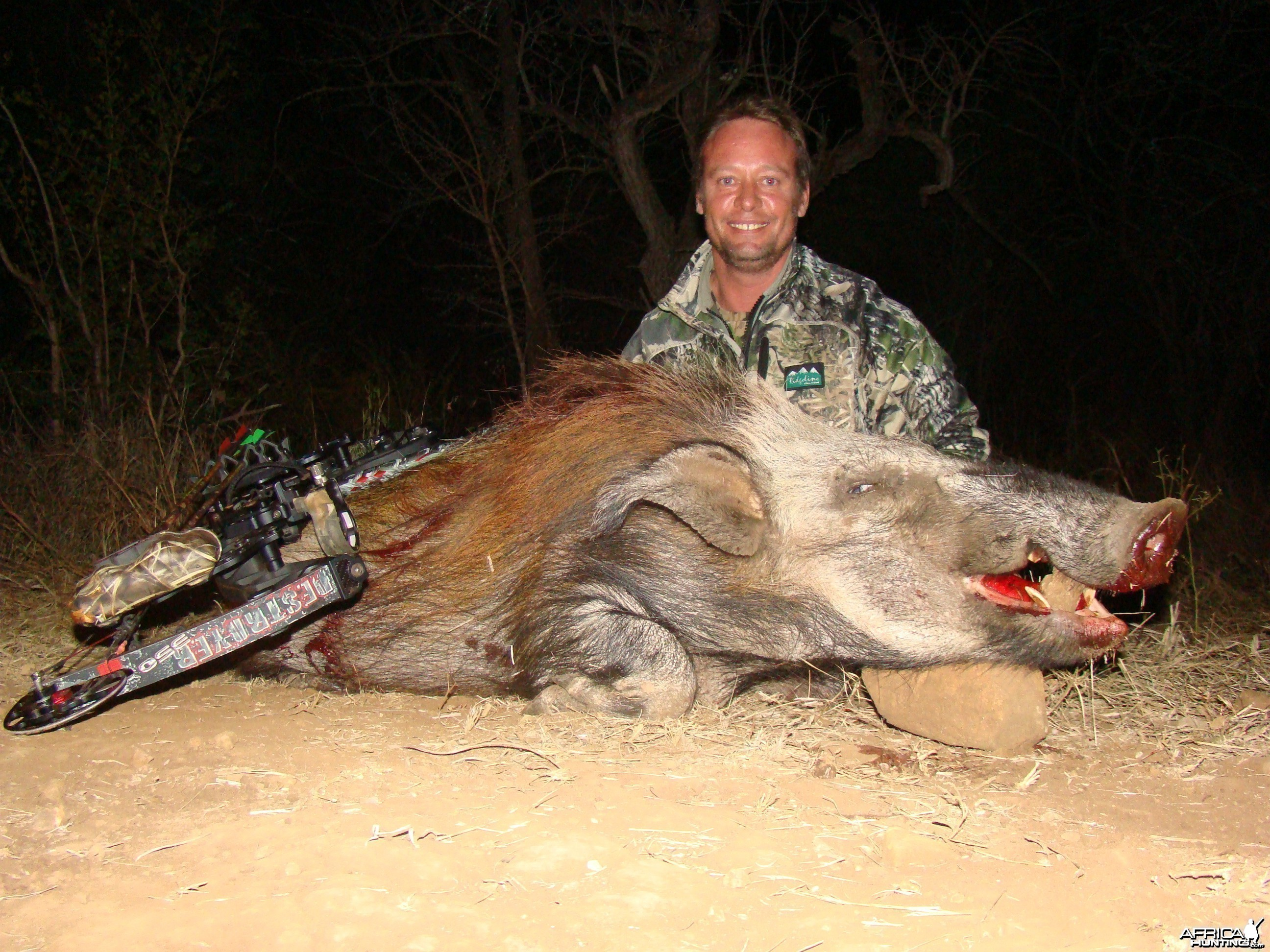 Bushpig With Niel Uys Safaris