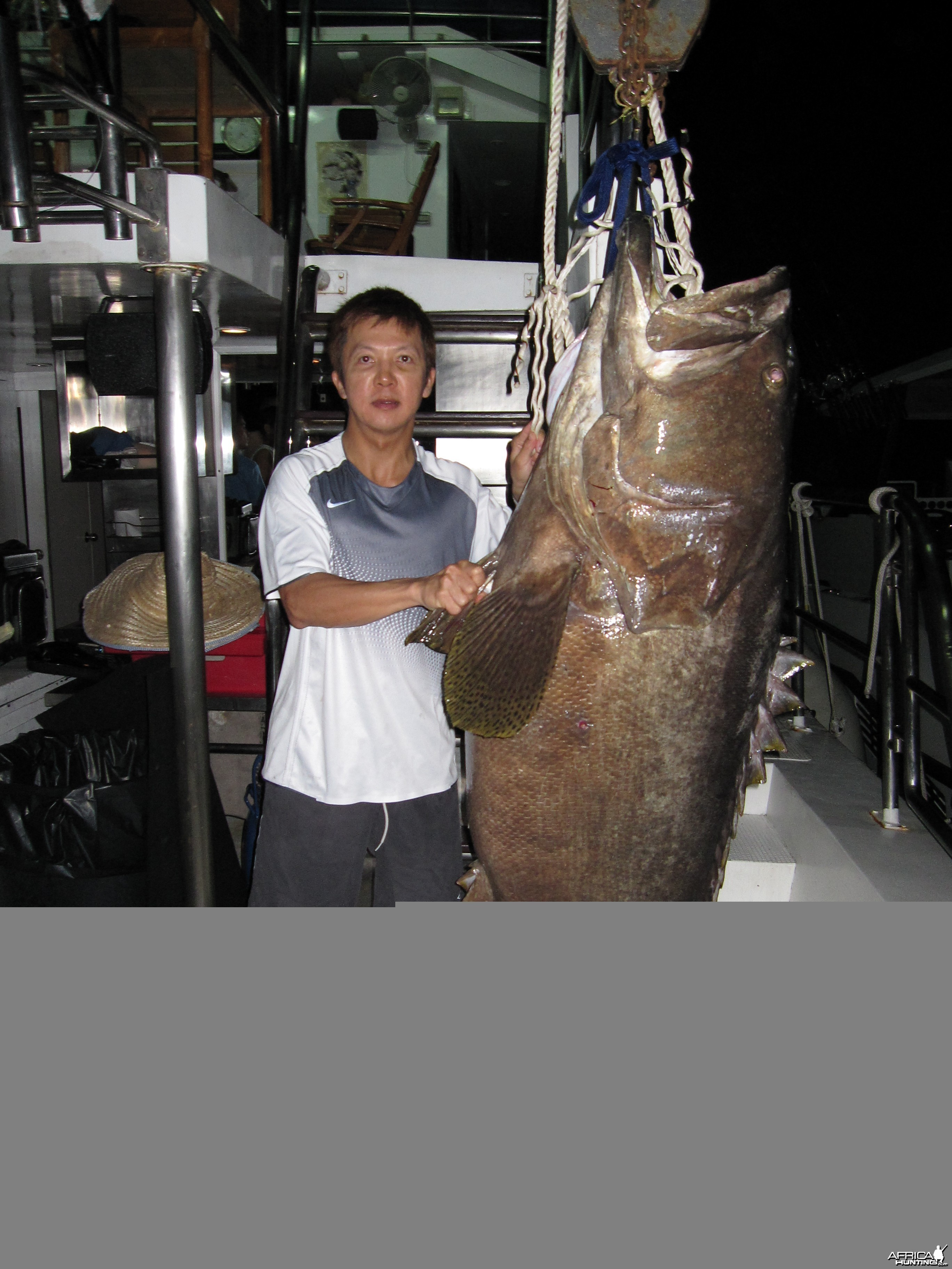Andaman's Sea Bass