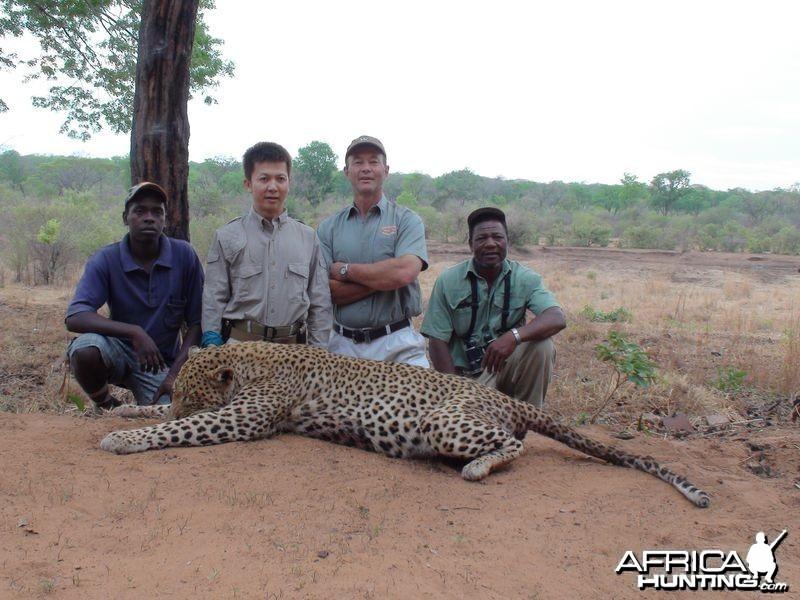 Zimbabwe's Leopard