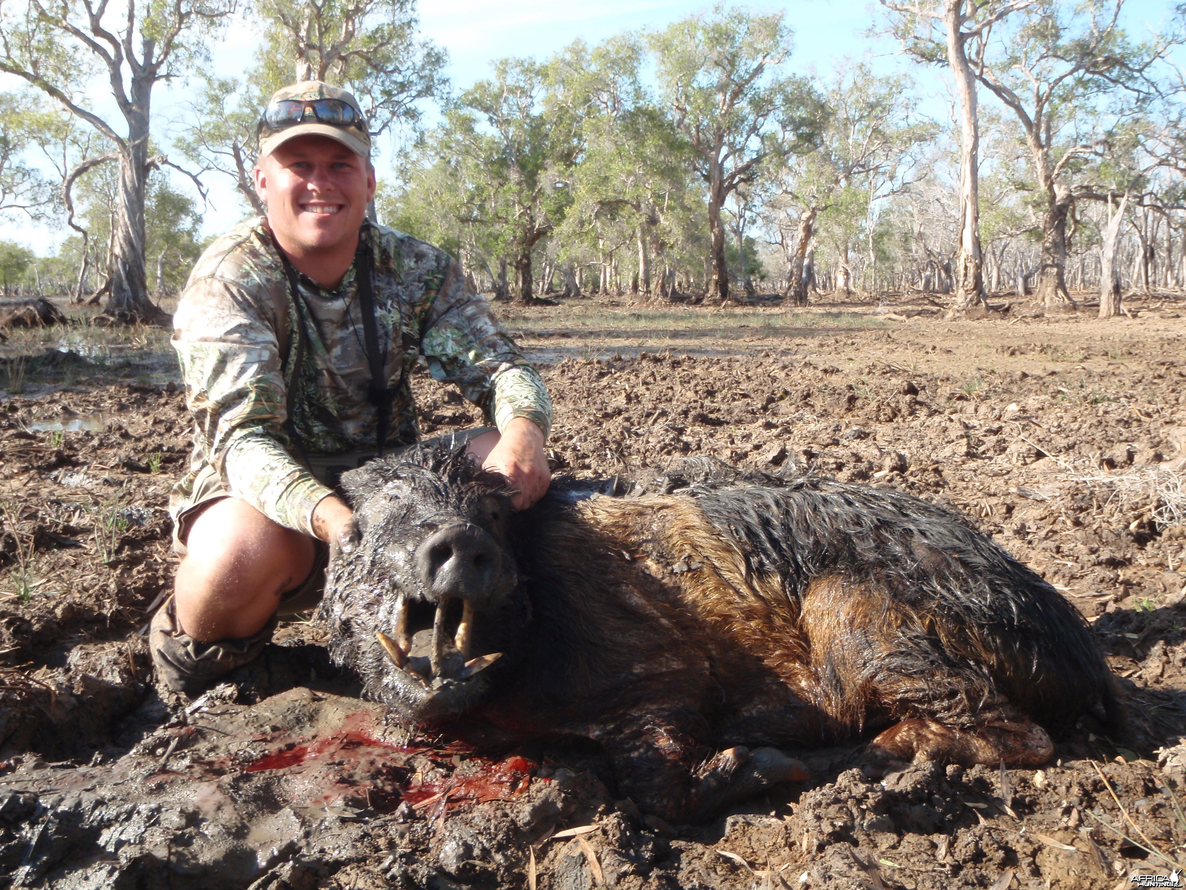 Hunting Boar in Northern Australia