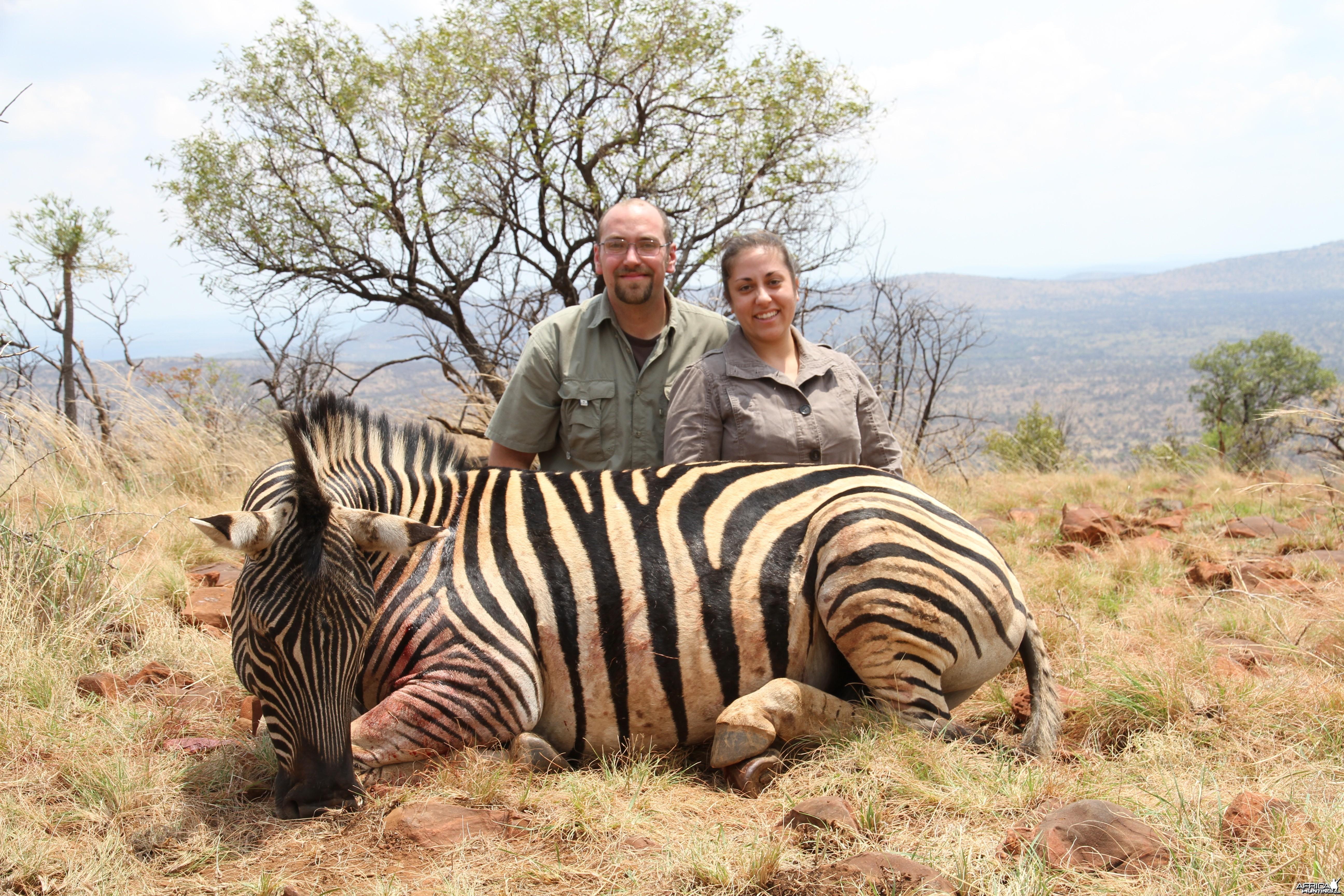 Burchell Zebra 2012