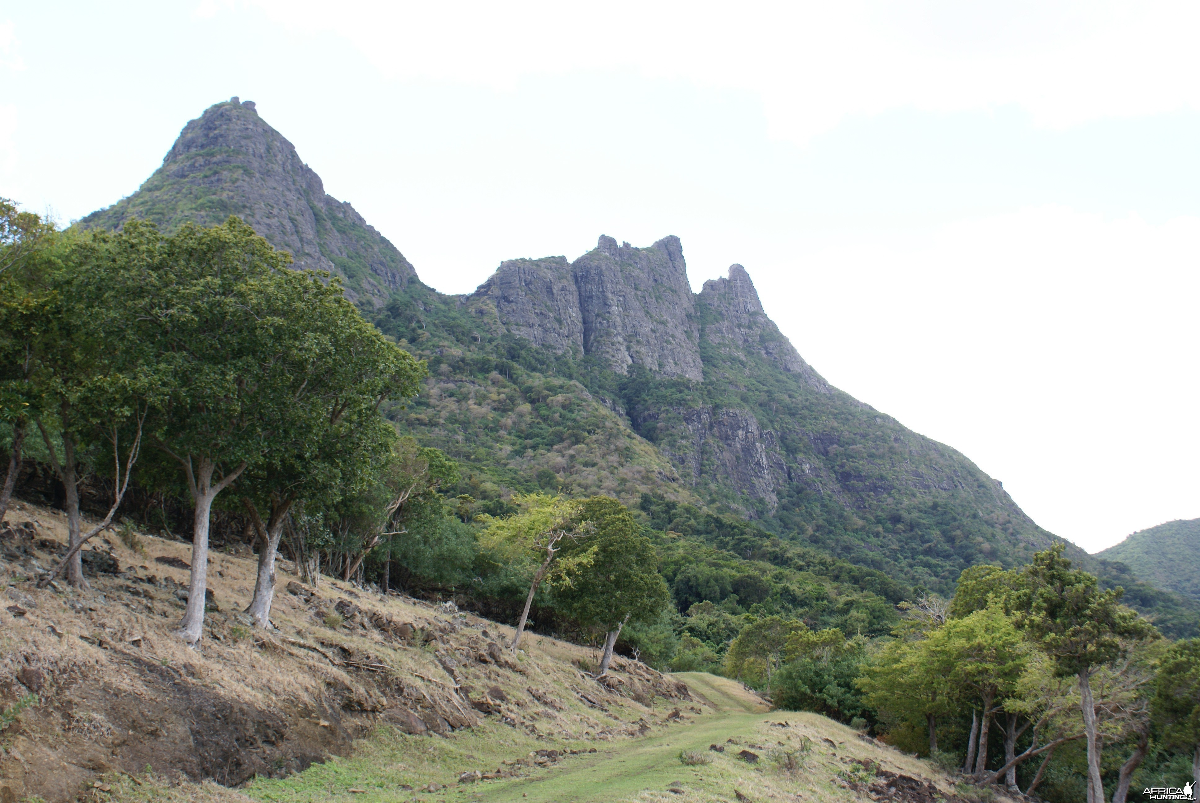 Hunting Grounds in Mauritius
