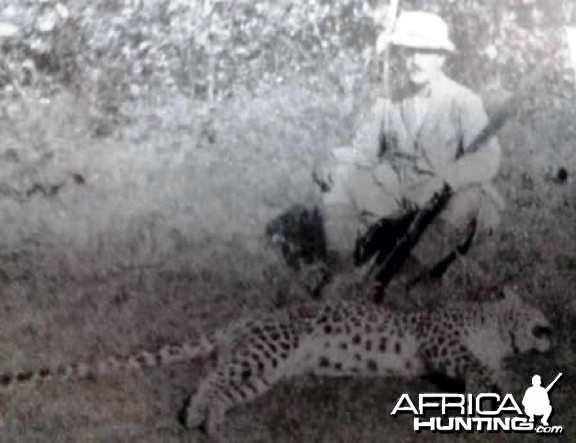 Hunting Panther
