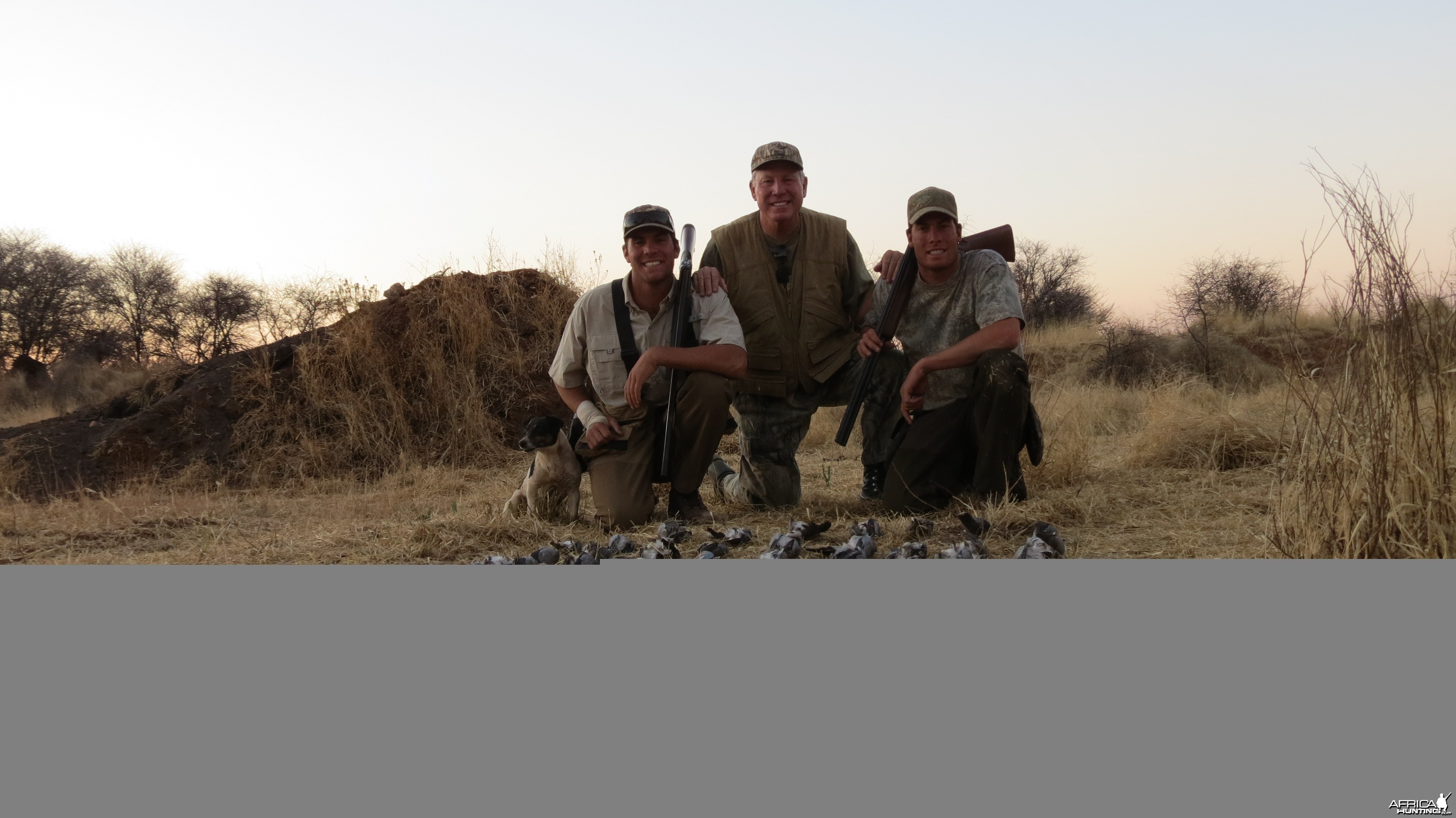 Wingshooting Dove in Namibia