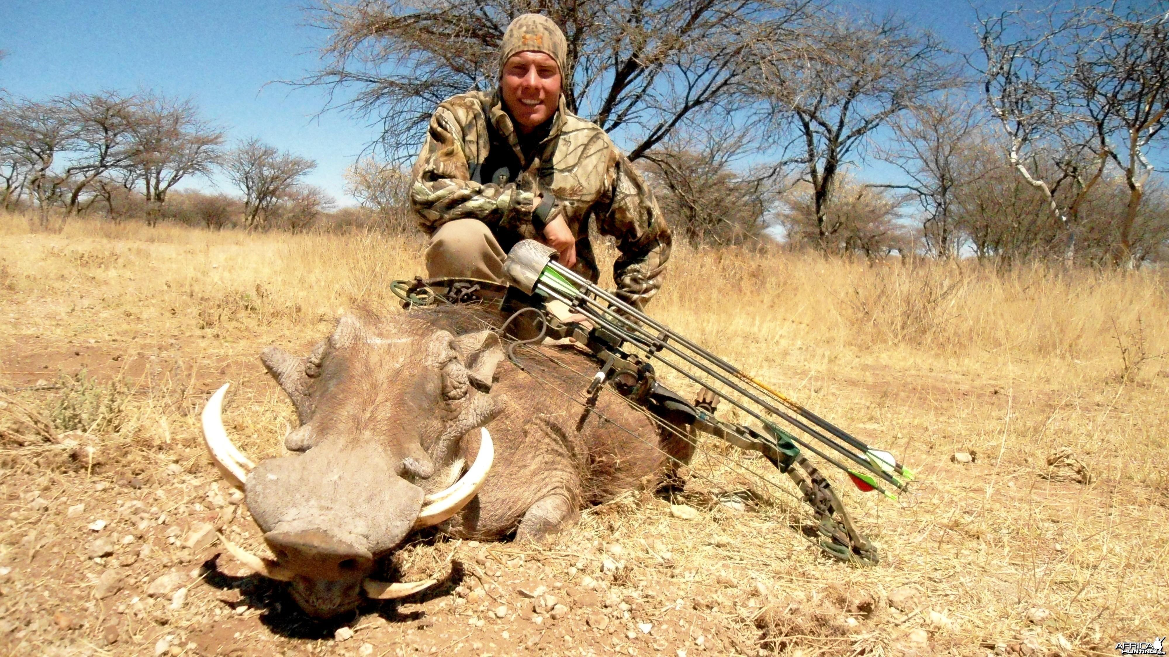 Bowhunting Warthog in Namibia