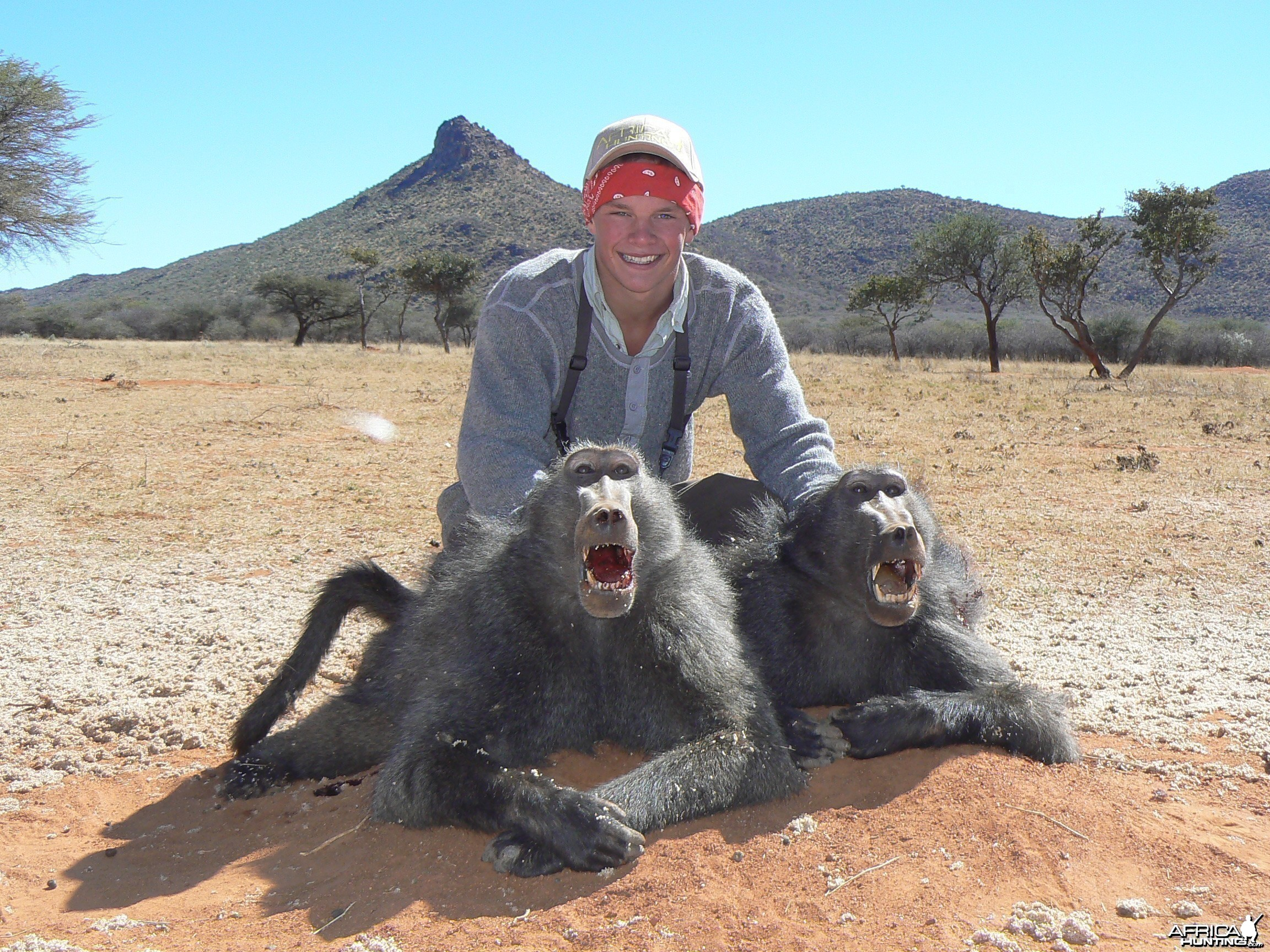 Hunting Baboon in Namibia