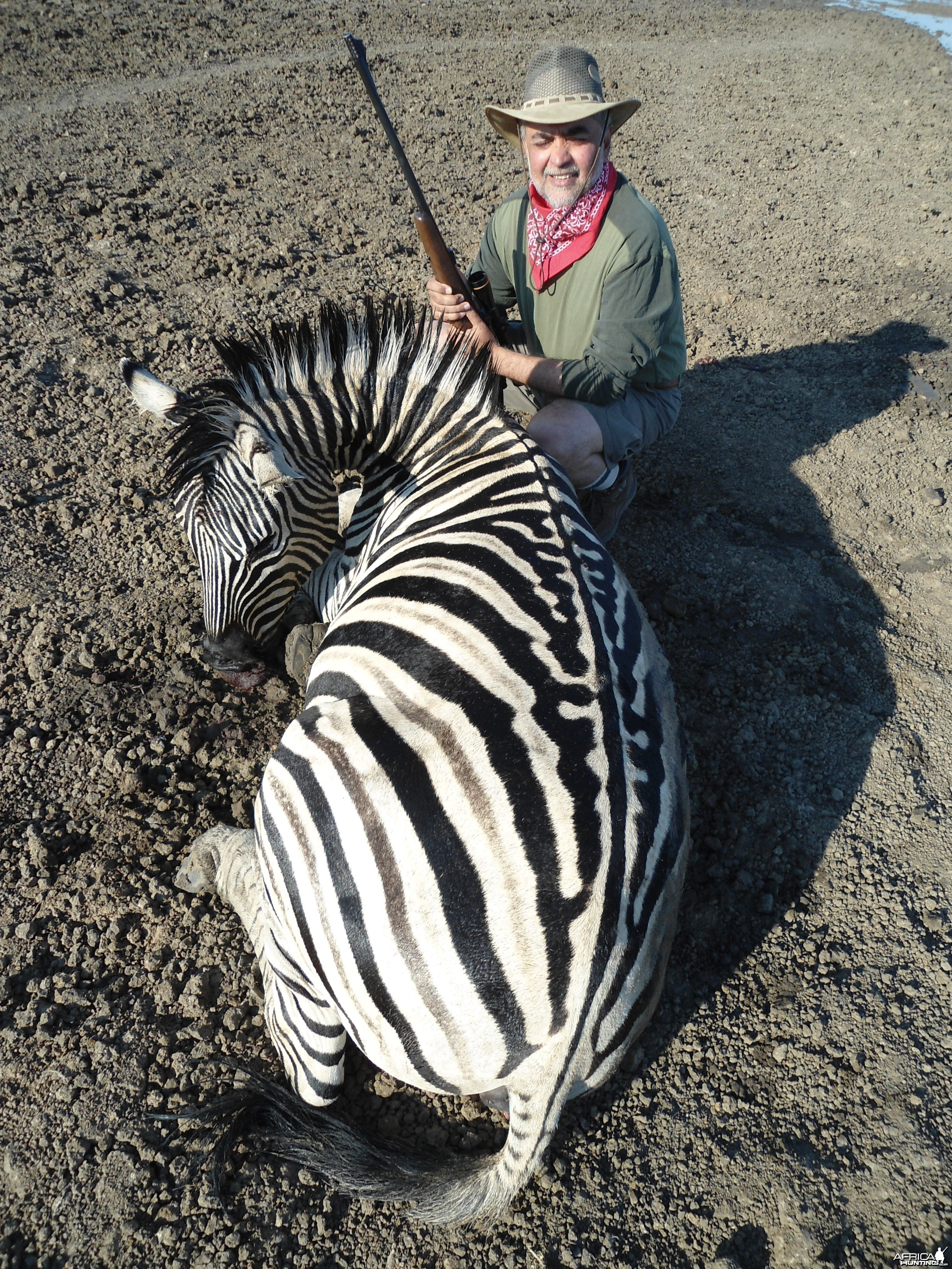 Hunting Burchell's Zebra in Namibia