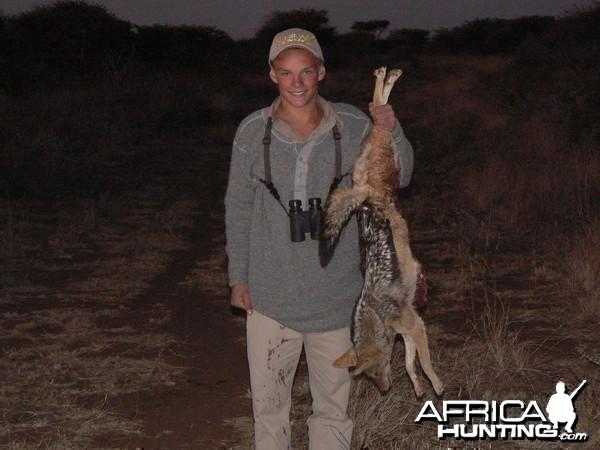 Hunting Jackal in Namibia