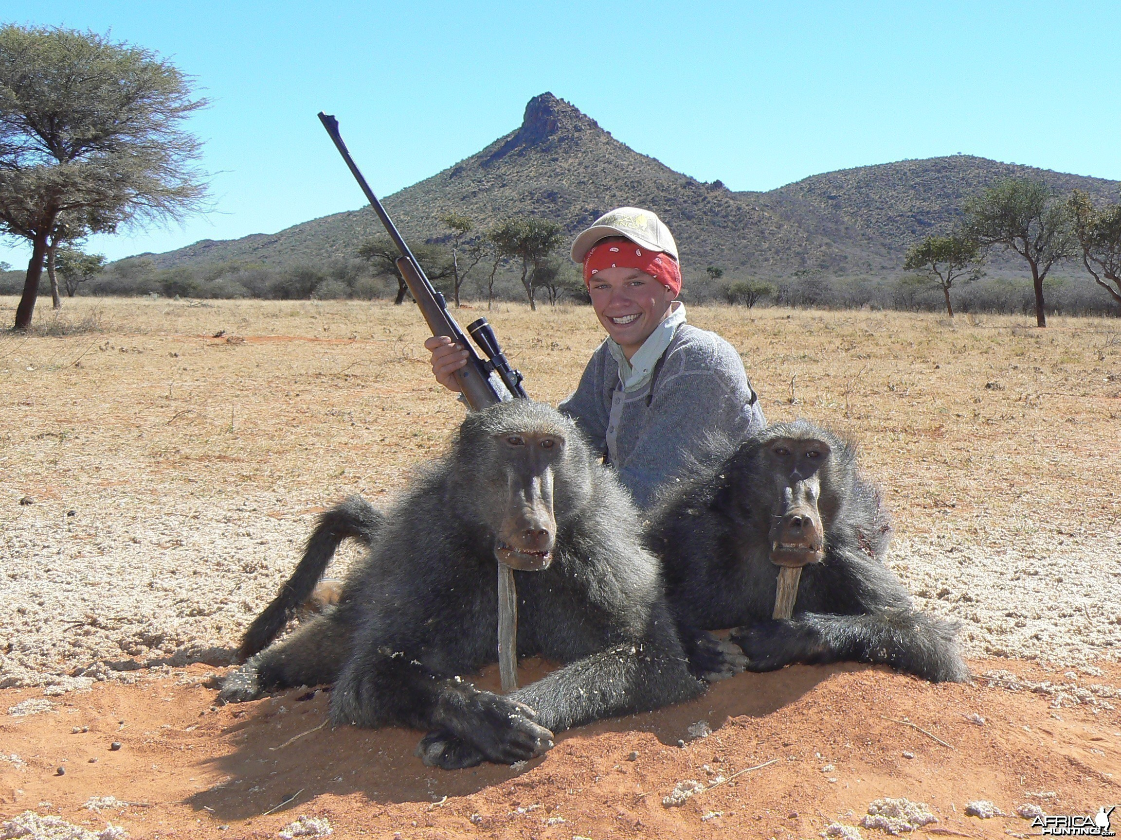 Hunting Chacma baboon in Namibia