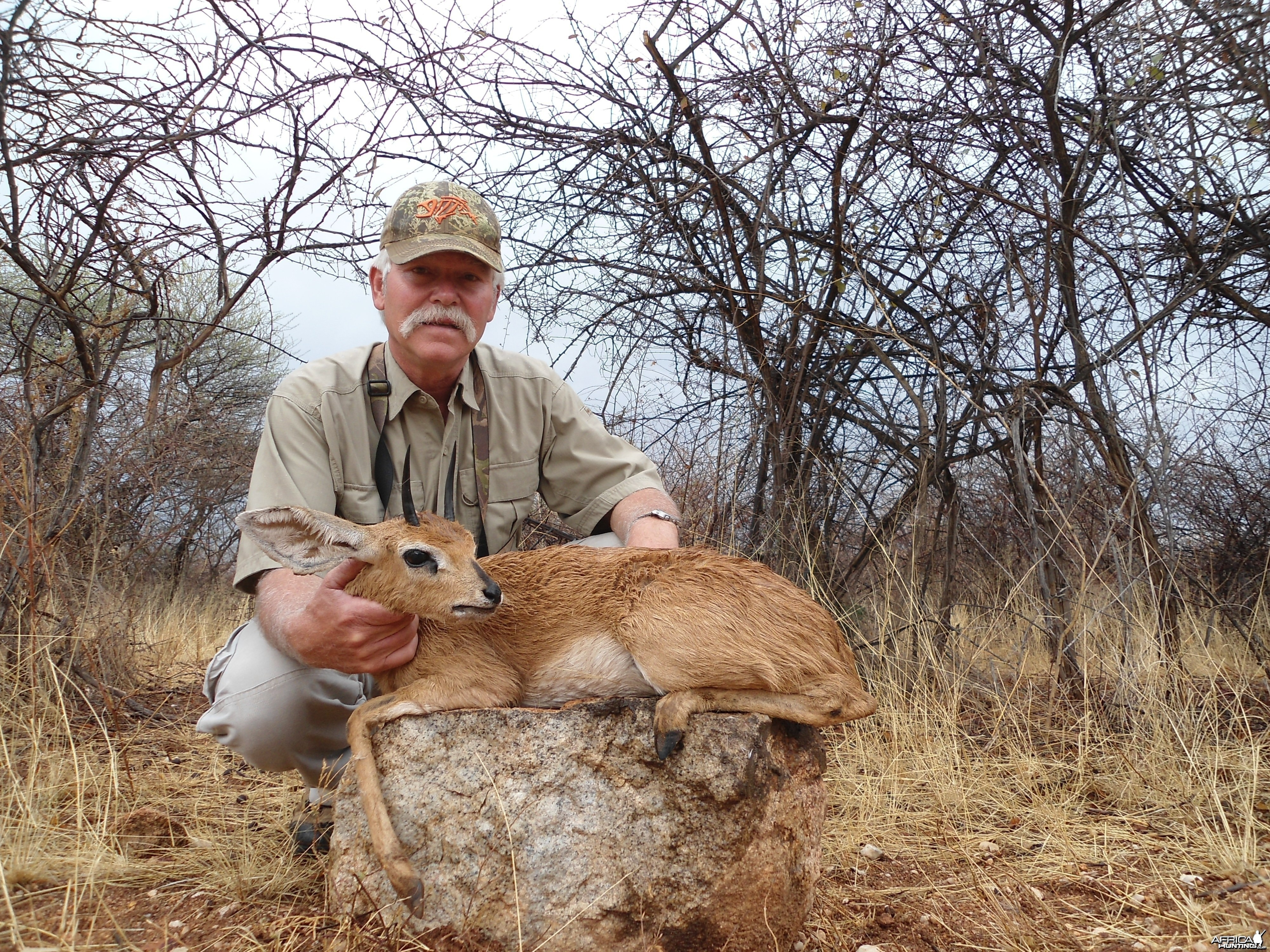 Hunting Steenbok in Namibia
