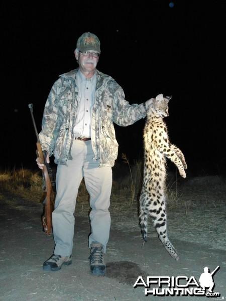 Hunting Serval in Namibia