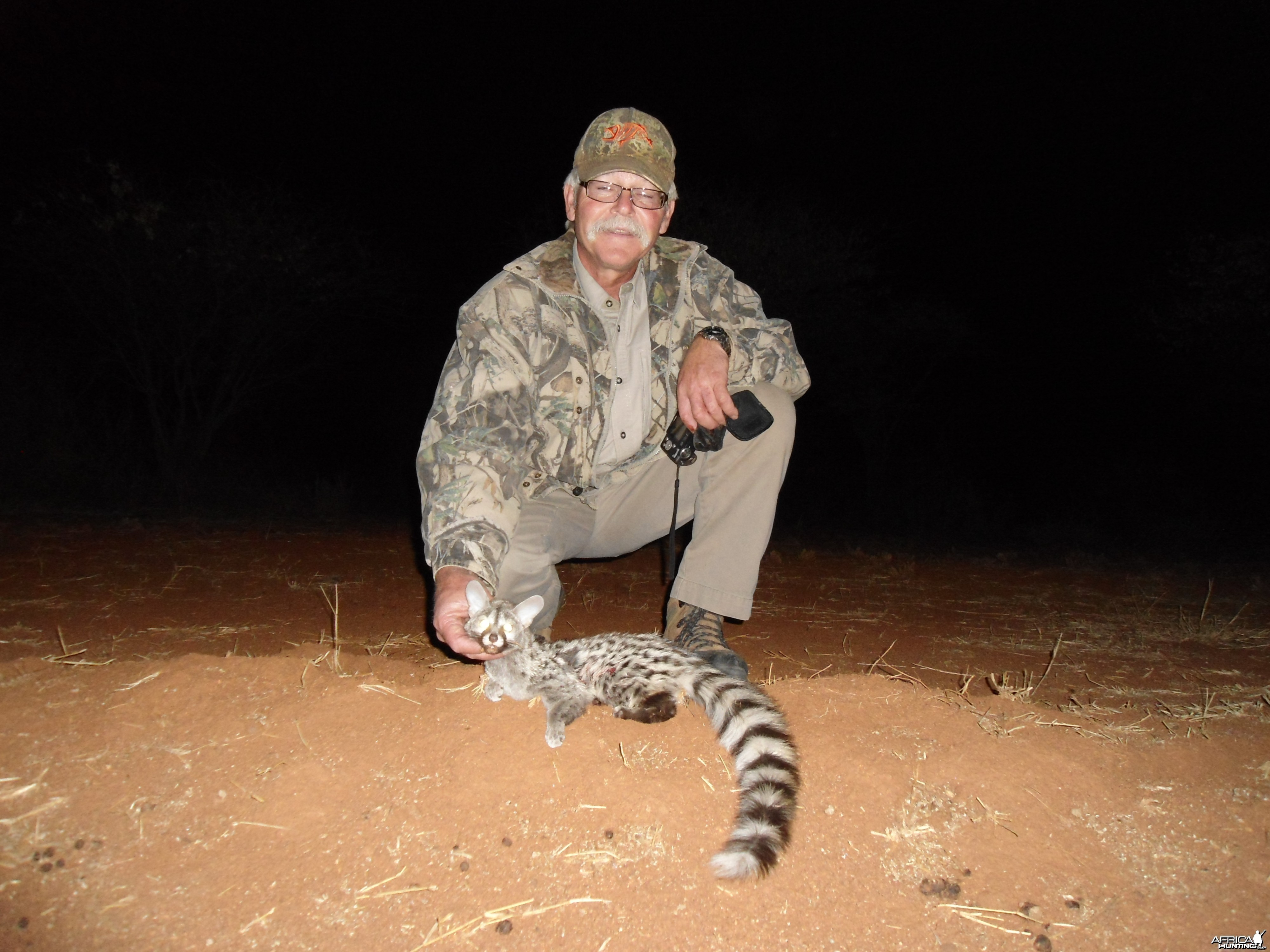 Hunting Genet Cat in Namibia