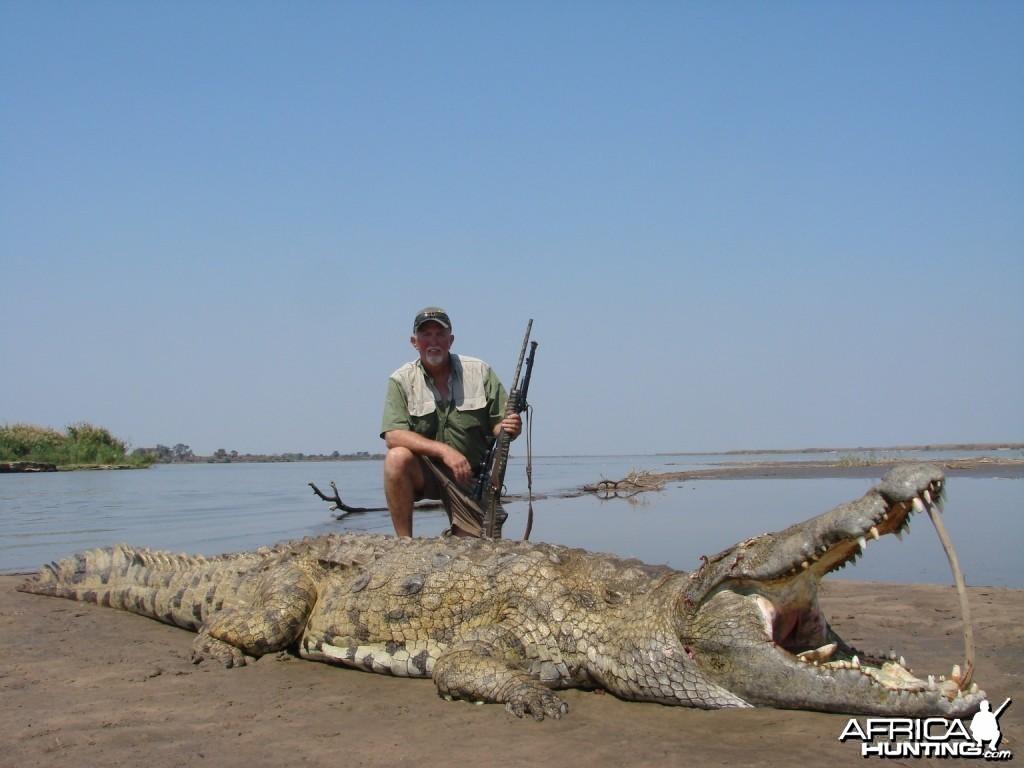 Zambezi croc