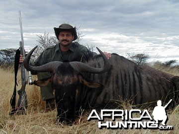 Blue Wildebeest Hunting in Namibia