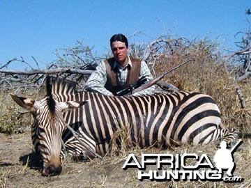 Hartmann's Zebra (Mountain Zebra) Namibia