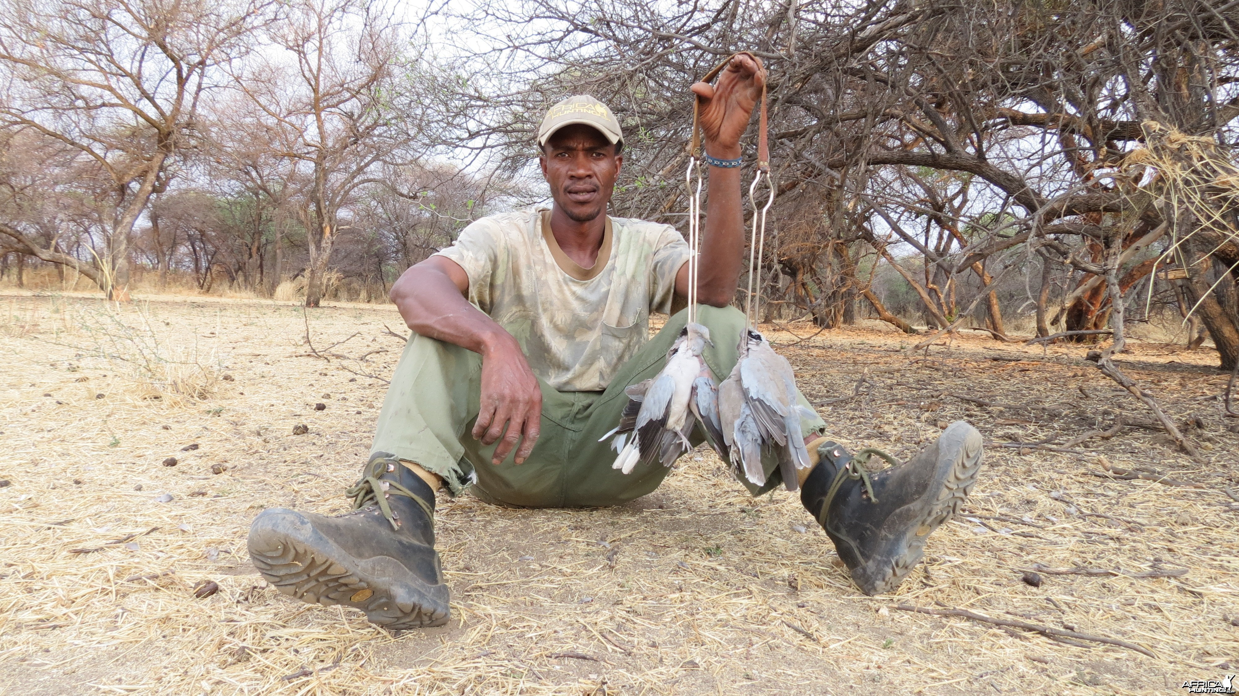 Dove Namibia