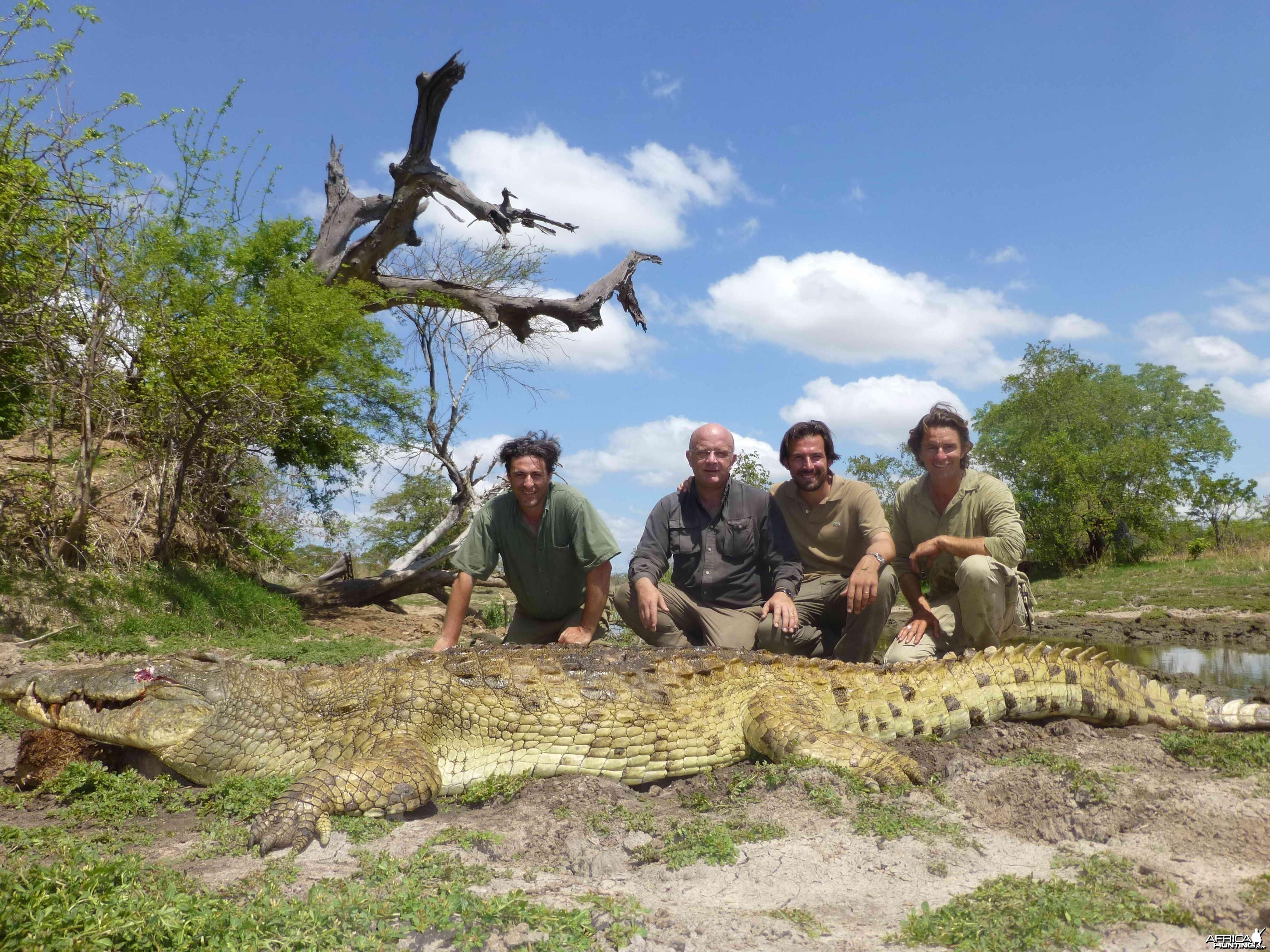 Croc Tanzanie