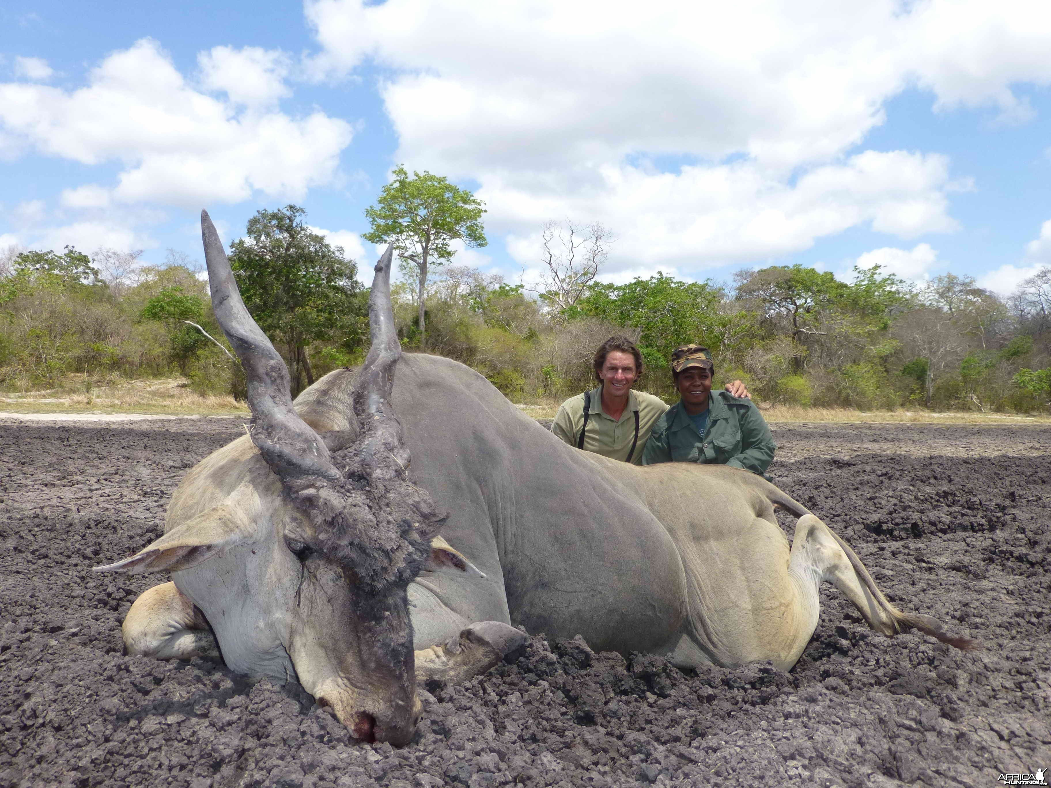 Eland Tanzanie