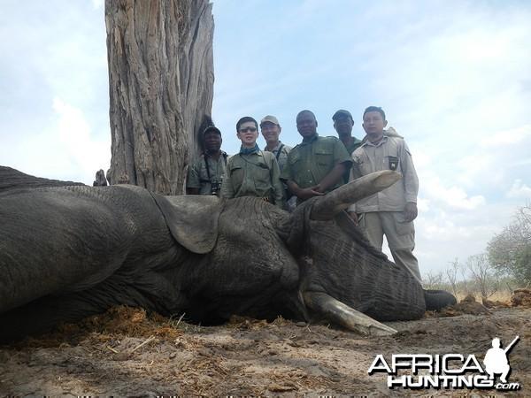 Zimbabwe 2012 4th Elephant