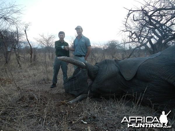 Zimbabwe 2012 7th Elephant