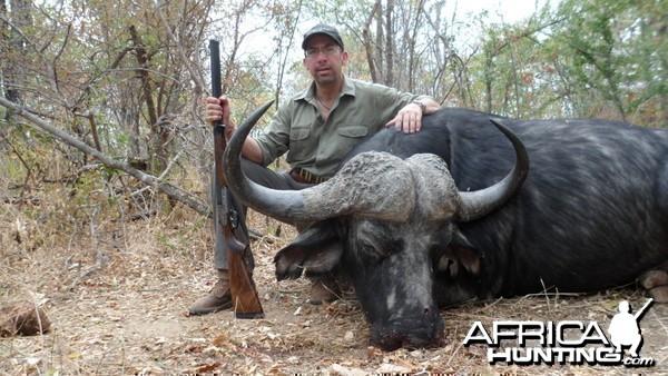 Zimbabwe Buffalo 2012
