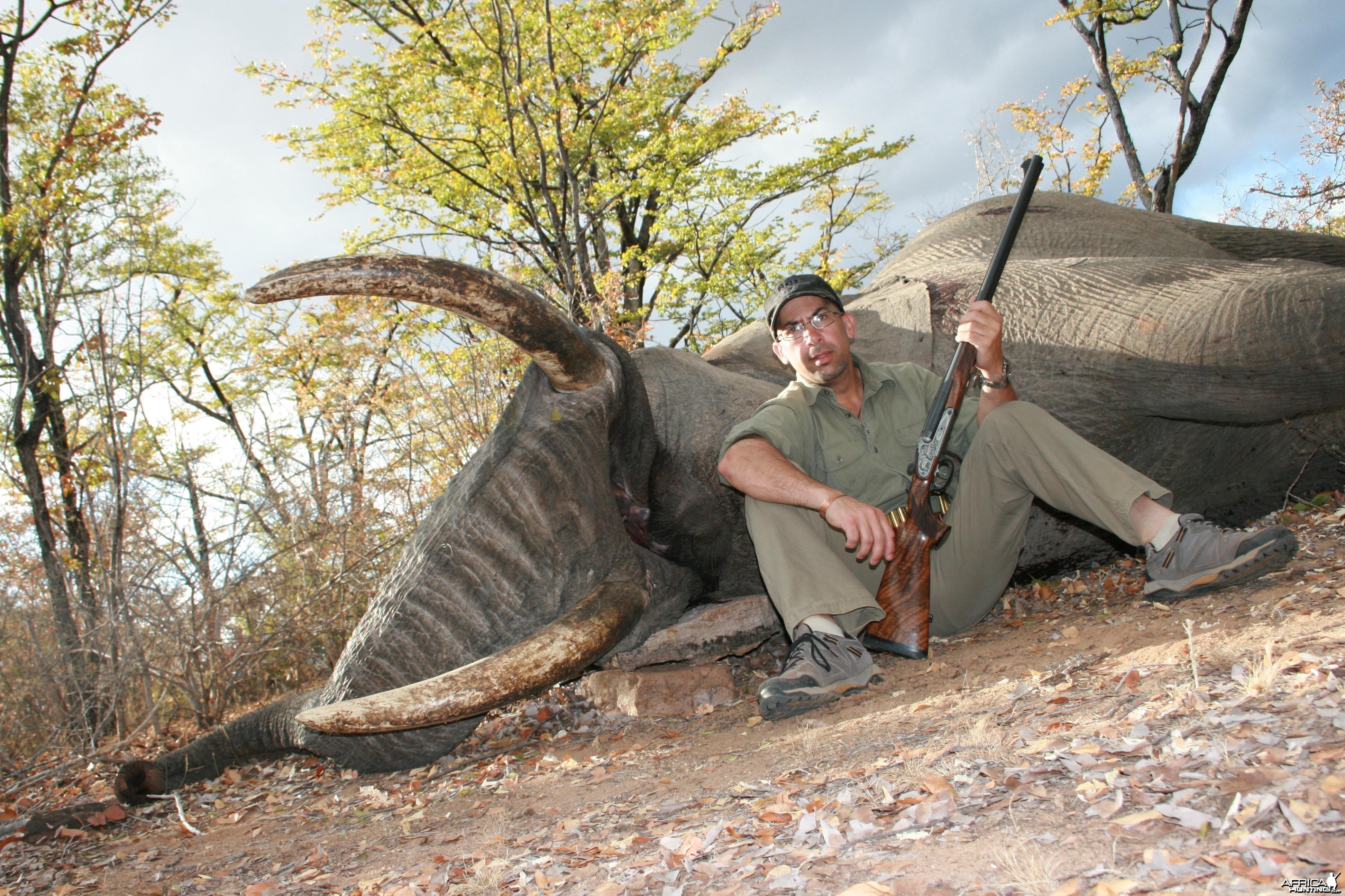 Zimbabwe Elephant 2012