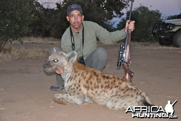 Zimbabwe Hyena 2012