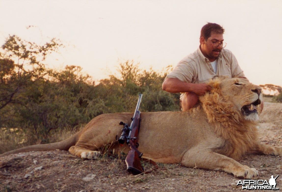 Lion 1995