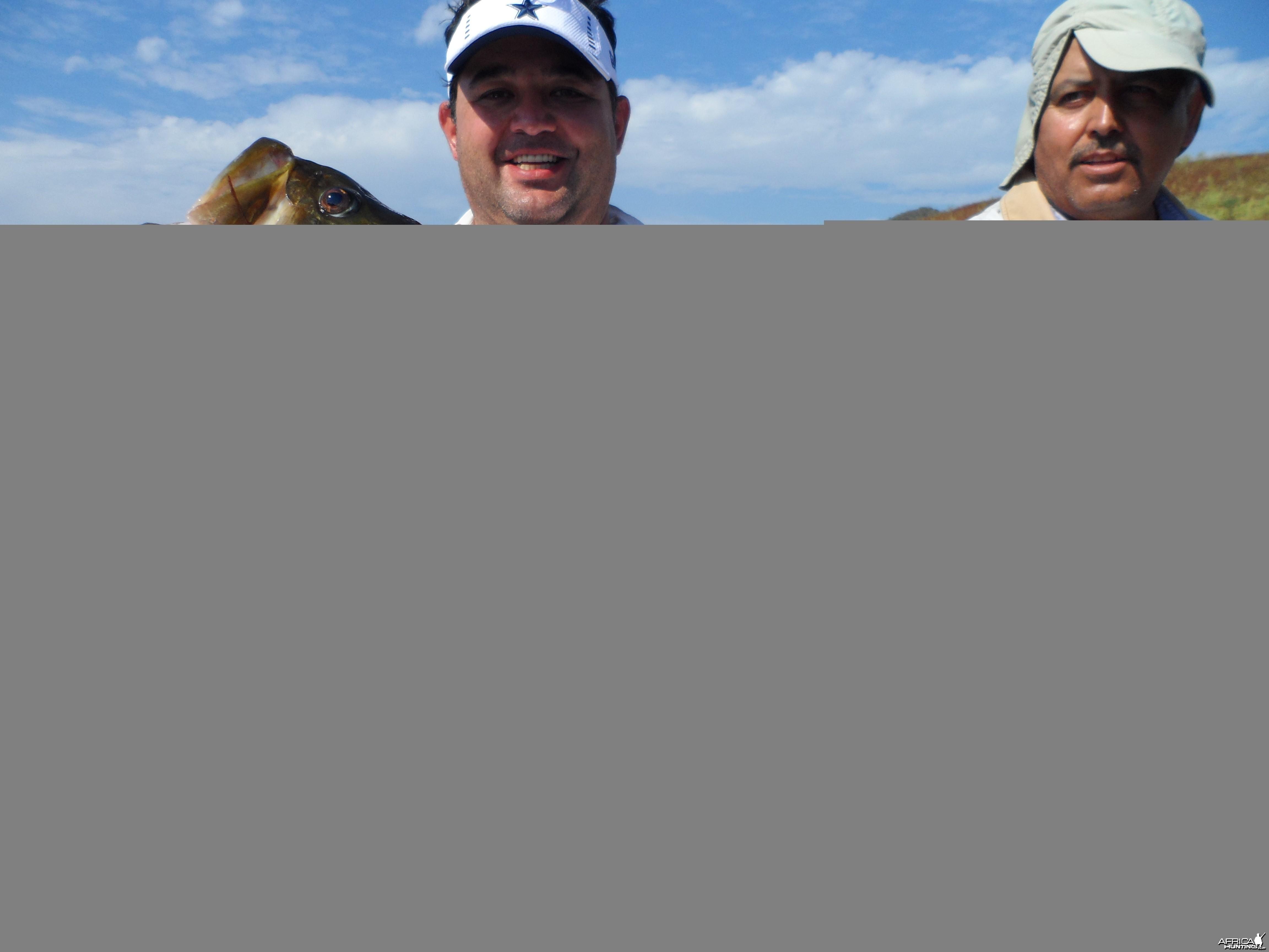 Bass of Sinaloa in Western Mexico