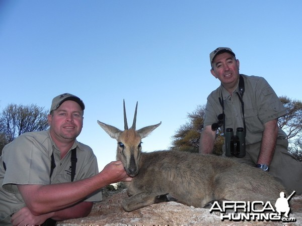 Grey Duiker hunted with Wintershoek Johnny Vivier Safaris